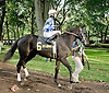Vegas No Show before The Dover Stakes at Delaware Park on 10/6/12