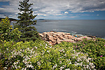 View from Ocean Path, Acadia National Park, ME