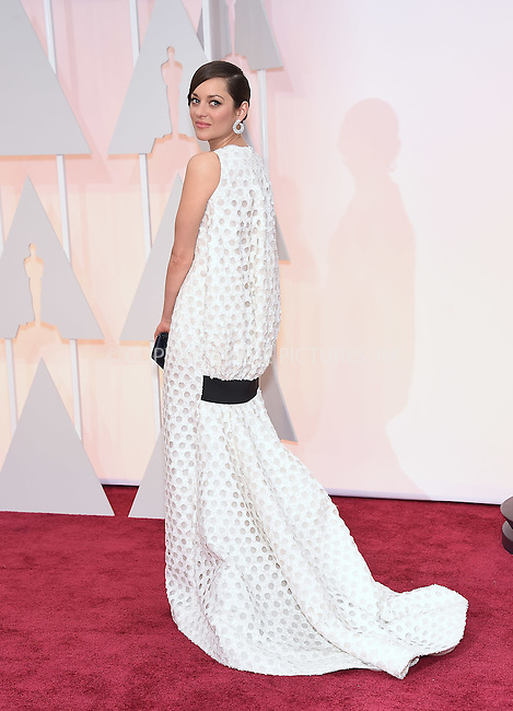 WWW.ACEPIXS.COM<br /> <br /> February 22 2015, LA<br /> <br /> Marion Cotillard arriving at the 87th Annual Academy Awards at the Hollywood &amp; Highland Center on February 22, 2015 in Hollywood, California<br /> <br /> <br /> By Line: Z15/ACE Pictures<br /> <br /> <br /> ACE Pictures, Inc.<br /> tel: 646 769 0430<br /> Email: info@acepixs.com<br /> www.acepixs.com