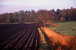 A913KA Ploughed field, pasture, drainage ditch and trees early spring Suffolk landscape England