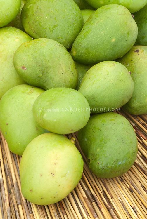Ripening mango