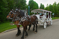 TAE- Fairmont Le Manor Richelieu Carriage Ride, Charlevoix Quebec CA 7 14