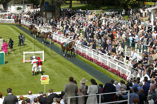 18 August 2004: General view of horses being walked in the parade ring during The Ebor Meeting at York Racecourse. Photo: Steve Bardens/Action Plus...horse racing 040818 flat horses venue venues racecourses