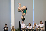 19 February 2016: Notre Dame's Deidre Worth competes in the Women's 3 Meter Diving preliminaries. The 2016 Atlantic Coast Conference Swimming and Diving Championships were held at the Greensboro Aquatic Center in Greensboro, North Carolina from February 17-27, 2016.