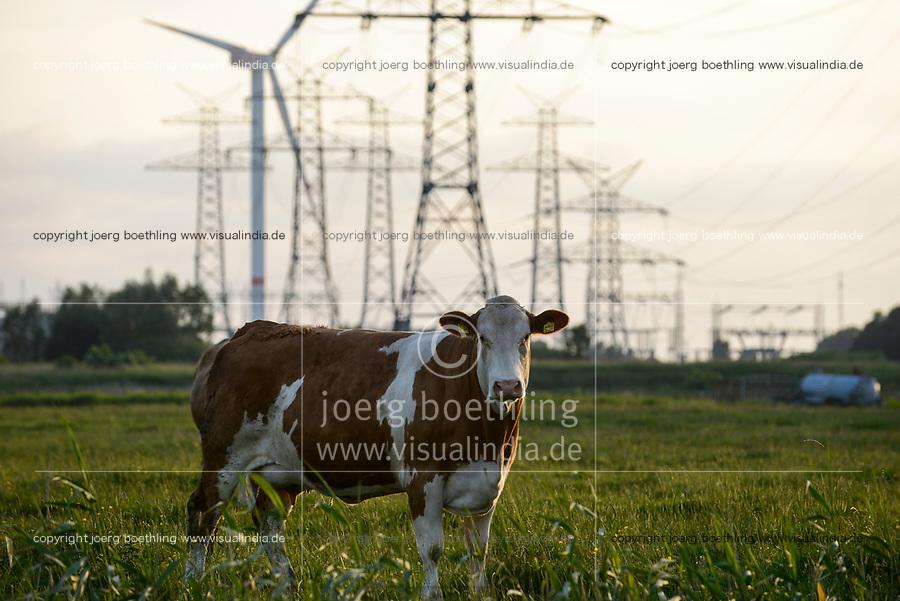 GERMANY Schleswig-Holstein, Brunsbuettel, wind turbines and grid  / DEUTSCHLAND Schleswig Holstein, Repower Windkraftanlage und Stromnetze