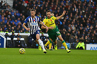 Adam Webster of Brighton & Hove Albion and Marco Stiepermann of Norwich City during Brighton & Hove Albion vs Norwich City, Premier League Football at the American Express Community Stadium on 2nd November 2019