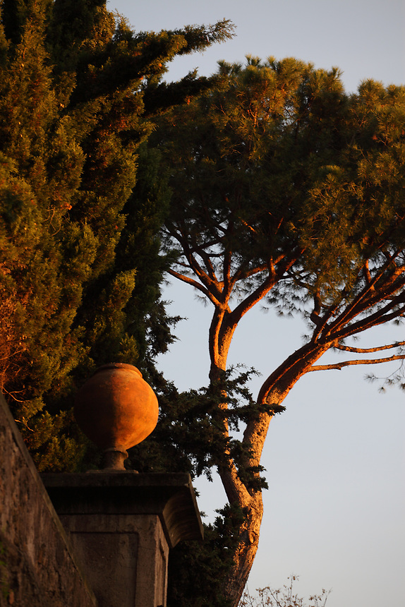 Rome, piazza Bologna: A view of the external wall of villa Massimo, with a cypress, a vase, and a pine on the background, in the sunrise light.