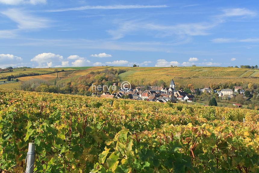 France, Cher (18), région du sancerrois, Sury-en-Vaux, le village et le vignoble en automne, AOC Sancerre // France, Cher, Sancerre region, Sury-en-Vaux, vineyards in autumn and the village