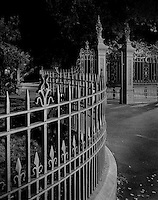 City Park Fence & Gate<br /> Launceston