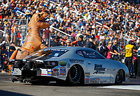 Oct 28, 2017; Las Vegas, NV, USA; A crew member for NHRA pro stock driver Chris McGaha wears a tyrannosaurus rex dinosaur Halloween costume during qualifying for the Toyota National at The Strip at Las Vegas Motor Speedway. Mandatory Credit: Mark J. Rebilas-USA TODAY Sports