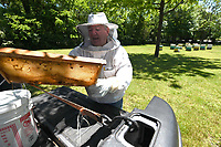 Beekeeper Ray Kelley of Elkins gets ready to check on some of his hives wearing his cool suit Wednesday May 20, 2020 at the Reagan Family Farm in Fayetteville. Kelley keeps around 70 hives scattered around rural areas. He started keeping bees around 7 years ago as a hobby before making it a business. Ray's Raw Honey is available at small independent business in the Northwest Arkansas area and can be found on Facebook. Visit nwaonline.com/2005210Daily/ for photo galleries. (NWA Democrat-Gazette/J.T. Wampler)