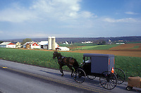 AJ1128, Amish, Pennsylvania, horse and buggy, Lancaster County, traffic, Amish horse and covered buggy pulling a wagon on a country road next to an Amish farm in Pennsylvania Dutch Country.