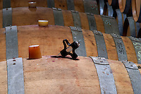 Chateau de Montpezat. Pezenas region. Languedoc. Barrel cellar. Drawing a sample with a pipette. France. Europe.