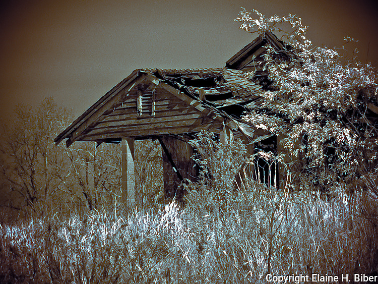 Abandoned farmhouse in infrared