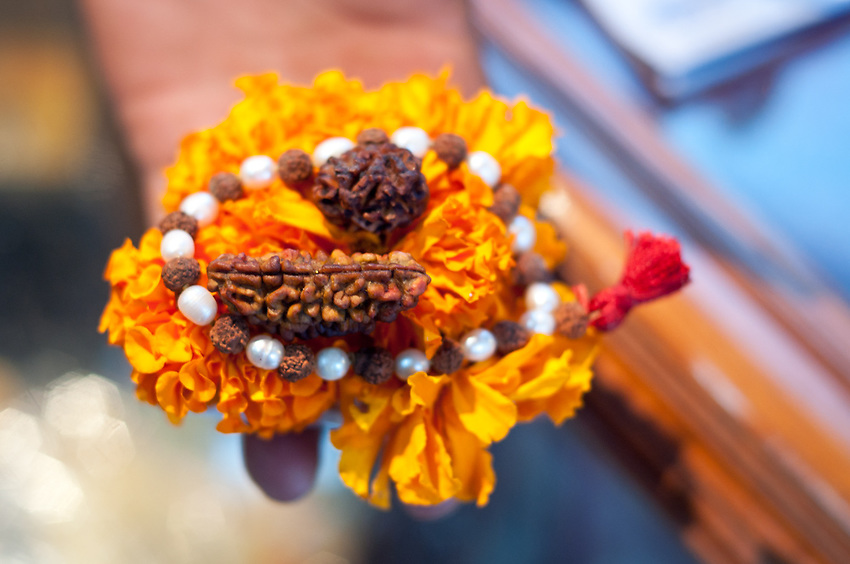A one-faced rudraksh - used as a sacred offering to Shiva