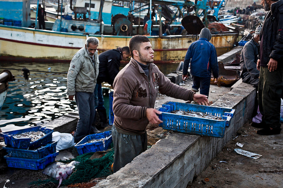 Gaza port: Once the work over, a part of the crew join the port to bring the fishes and participate to the auction, meaning the sell to the merchant of Gaza.<br /> <br /> Port de Gaza:Une fois la p&ecirc;che termin&eacute;e, une partie de l'&eacute;quipage apporte les poissons au port afin de participer &agrave; la cr&eacute;e, cad la vente de poissons aux marchands de Gaza.