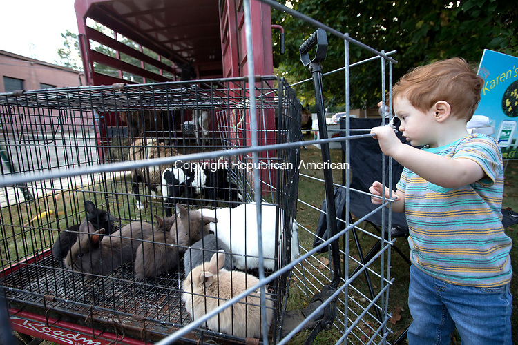 Watertown, CT-06, October 20107-100617CM03 Teddy Carey 2, of Watertown checks out rabbits from Kalenauskas Farm of Watertown  during an October Festival at St. John the Evangelist Church in Watertown on Friday.  The event which was open to the public, featured food trucks, local craft vendors, bake sale, photo booth, amusements, pumpkin and fall decorations sales. Proceeds from the event will benefit the parish.  Christopher Massa Republican-American