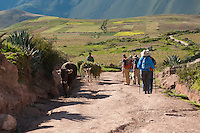 Hikers walk down a trail to Salineras to see the natural, ancient salt beds. 500 years ago, the Incas built salt pans in order to gather salt, primarily to create salt licks for cows. For the citizens of Maras, Salineras are crucial for profit, as they are responsible for a certain number of plots that get packaged and then sold.