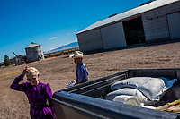 CAPULIN, MEXICO - OCTOBER 31:  Mexican Mennonites, children of Giesbrecht, do their chores on their farm on the 31st of October, 2015 in Capulin, Mexico. <br /> <br /> Daniel Berehulak for The New York Times