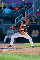 Aberdeen IronBirds Kyle Stowers (44) shows bunt during a NY-Penn League game against the Vermont Lake Monsters on August 18, 2019 at Leidos Field at Ripken Stadium in Aberdeen, Maryland.  Vermont defeated Aberdeen 6-5.  (Mike Janes/Four Seam Images)