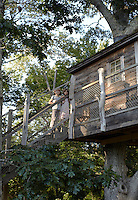 Alice and George standing on the staircase that leads to their treehouse