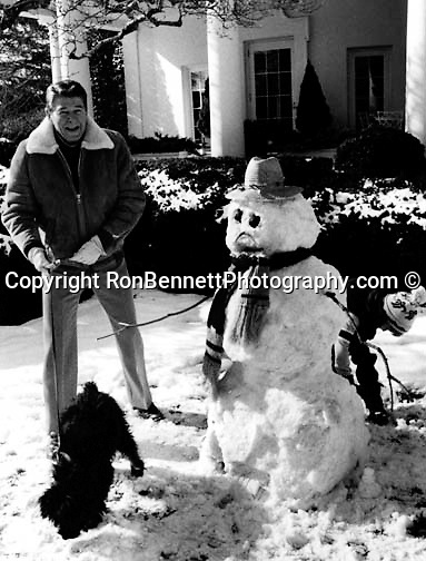 President Ronald Reagan makes a snowman for his grandchildren in the rose garden of the White House with his dog,