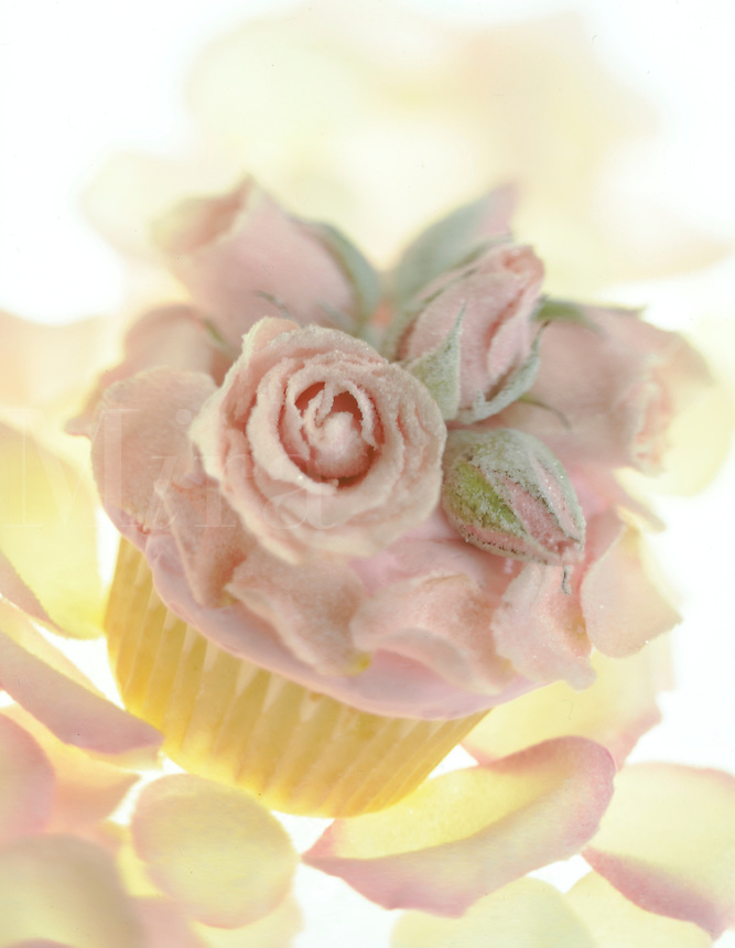 Iced Cup Cake with Sugared Pink Rose