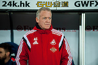 Swansea Manager, Alan Curtis  looks on during the Barclays Premier League match between Swansea City and Sunderland played at the Liberty Stadium, Swansea  on  January the 13th 2016