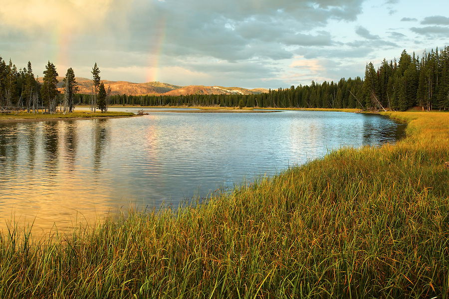 Yellowstone River running grassy meadows near sunset, Yellowstone National Park, Wyoming, USA