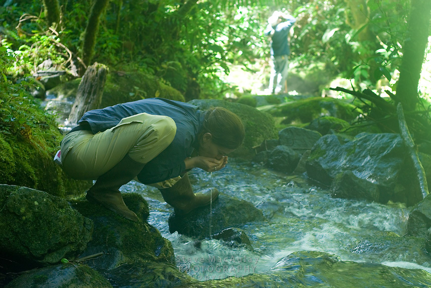 Enjoying the rare luxury of a mountain stream you can safely drink from, Parque Internacional La Amistad, Panama
