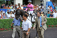 Corporate Jungle (no. 2), ridden by Javier Castellano and trained by Chad Brown, wins the  63rd running of the grade 3 Skip Away Stakes for four year olds and upward on March 31, 2012 at Gulfstream Park in Hallandale Beach, Florida.  (Bob Mayberger/Eclipse Sportswire)