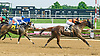 Tricky Zippy winning at Delaware Park on 6/22/17