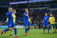 Joe Ralls of Cardiff City reacts after seeing his second penalty saved during the Sky Bet Championship match between Cardiff City and Norwich City at the Cardiff City Stadium, Cardiff, Wales on 1 December 2017. Photo by Mark  Hawkins / PRiME Media Images.