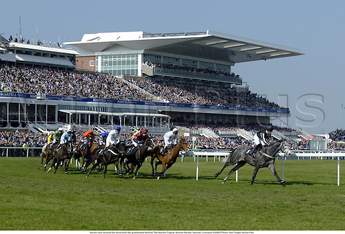 Horses race around the bend with the grandstand behind, The Martell Cognac Aintree Hurdle, Aintree, Liverpool 030405 Photo: Neil Tingle/Action Plus...2003 horse racing horses national hunt course courses venue venues
