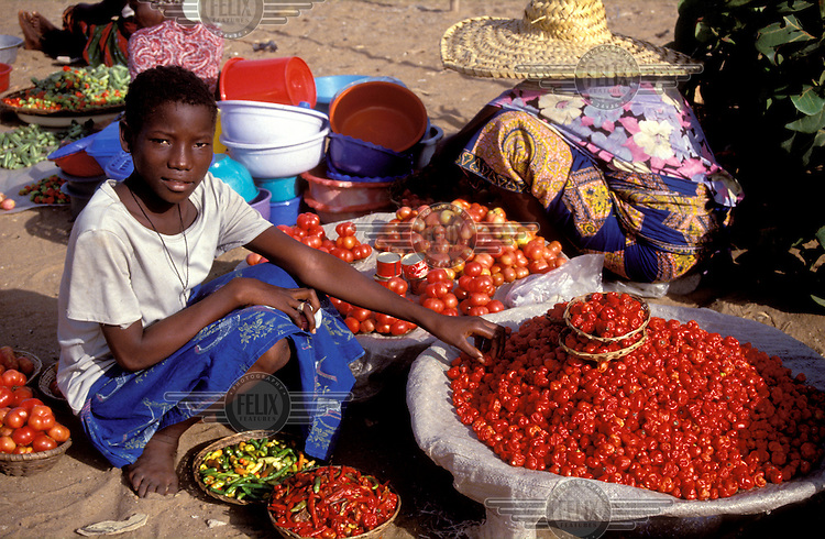 © Giacomo Pirozzi / Panos Pictures..BENIN..Selling tomatoes and chillis at the market.