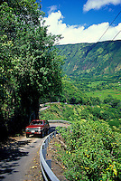 Only four-wheel-drive vehicles can venture on the steep road into Waipio Valley.
