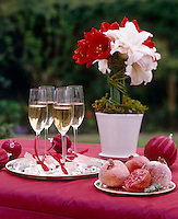 Champagne in name tagged flutes is served on a table decorated with red and white amaryllis and sugared pomegranate