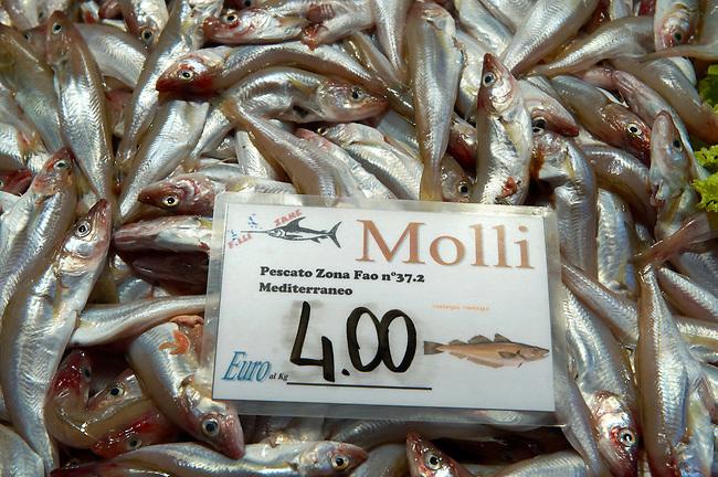 Fresh fish Molli - whitebait - Venice Rialto Fish Market