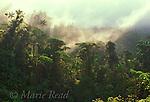 Panama: Scenery, Habitats