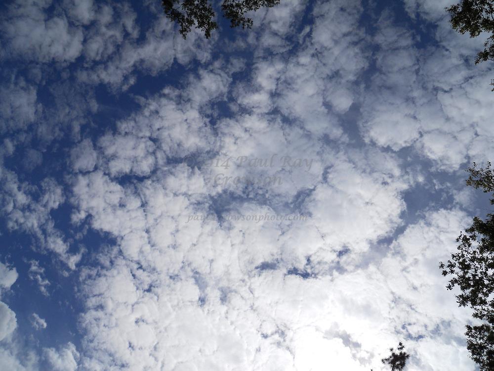 Clouds 16