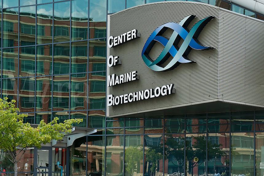 Center of Marine Biotechnology, Inner Harbor, Baltimore, Maryland, MD, USA
