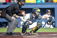 Michigan Wolverines catcher Joe Donovan (0) behind the plate against the Rutgers Scarlet Knights on April 26, 2019 in the NCAA baseball game at Ray Fisher Stadium in Ann Arbor, Michigan. Michigan defeated Rutgers 8-3. (Andrew Woolley/Four Seam Images)