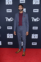 """LOS ANGELES - SEP 23:  Avi Nash at the """"The Walking Dead"""" Season 10 Premiere Event at the TCL Chinese Theater on September 23, 2019 in Los Angeles, CA"""