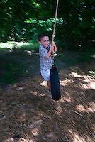 Young boy  plays on tire swing suspended from tree limb.