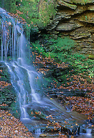 Ganoga Falls, at 95 feet, is the tallest waterfall east of the Mississippi River, Rickett's Glen State Park, Luzerne County, Pennsylvania