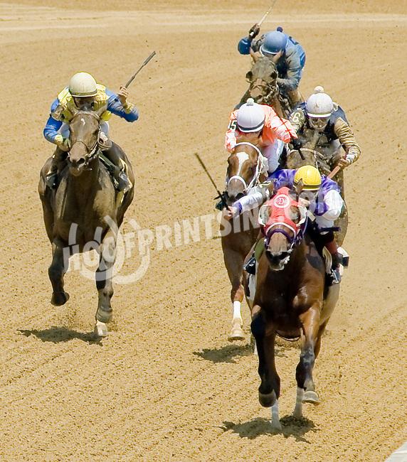 Elizabeth Lane winning at Delaware Park on 7/4/12