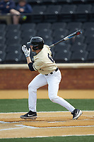 Michael Turconi (6) of the Wake Forest Demon Deacons follows through on his swing against the Notre Dame Fighting Irish at David F. Couch Ballpark on March 10, 2019 in  Winston-Salem, North Carolina. The Demon Deacons defeated the Fighting Irish 7-4 in game one of a double-header.  (Brian Westerholt/Four Seam Images)
