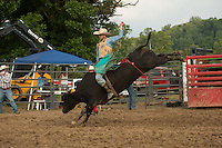 SEBRA - Jane Lew, WV - 7.18.2015 - Bulls & Action