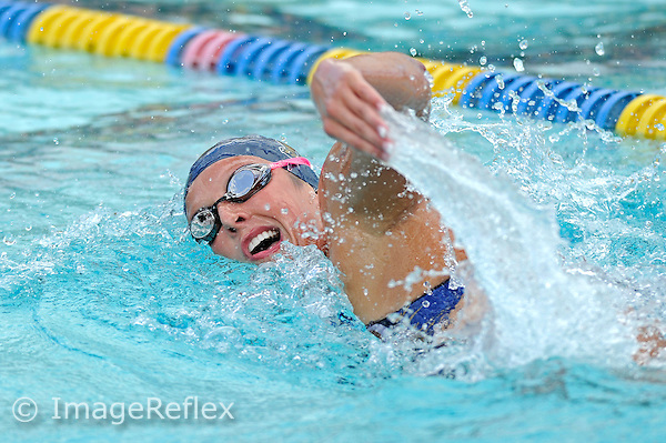 11 January 2014:  FIU's Danielle Meara competes in the 1,000 yard freestyle as the FIU Golden Panthers competed against the Central Connecticut State Blue Devils at the Biscayne Bay Campus Aquatics Center in Miami, Florida.