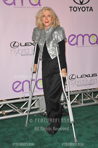 Blythe Danner at the 20th anniversary Environmental Media Awards at Paramount Studios, Hollywood..October 25, 2009  Los Angeles, CA.Picture: Paul Smith / Featureflash